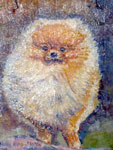 Pomeranian Pet Portrait, Oil on Wood